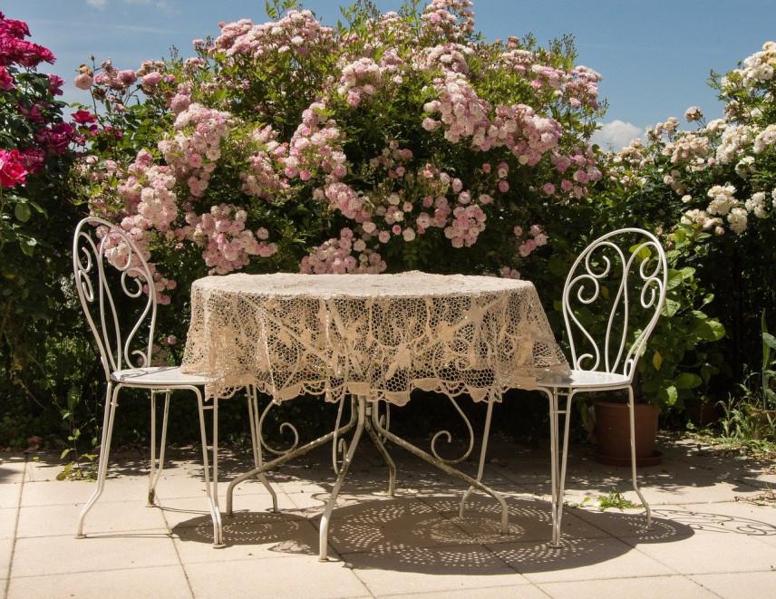 Jak obsadzić taras roślinami - jakie rośliny, kwiaty na taras?