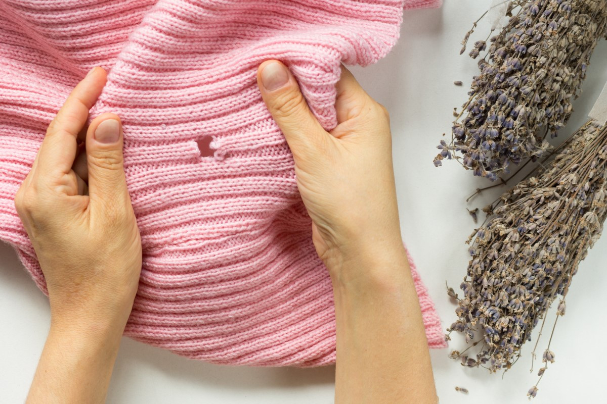 Mole ubraniowe - jak wyglądają i jak się ich pozbyć?