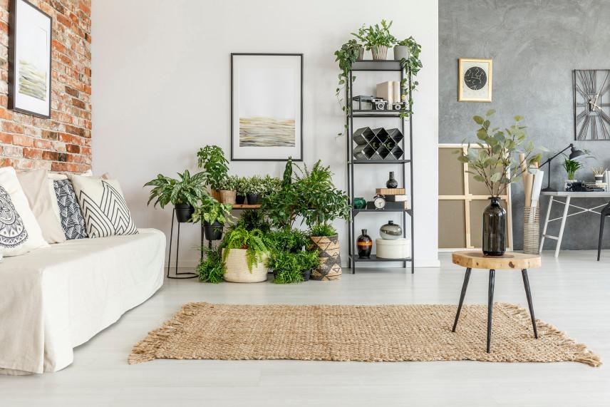 Biało-szary salon z ceglaną ścianą w stylu skandynawski