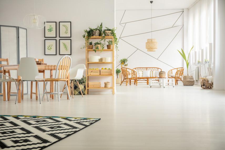 Salon w stylu skandynawskim z plakatami