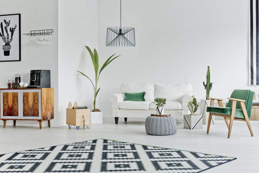 Skandynawski salon z dywanem