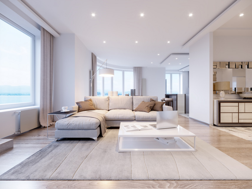 Duży salon w domu