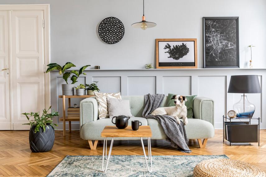 Salon z zieloną sofą
