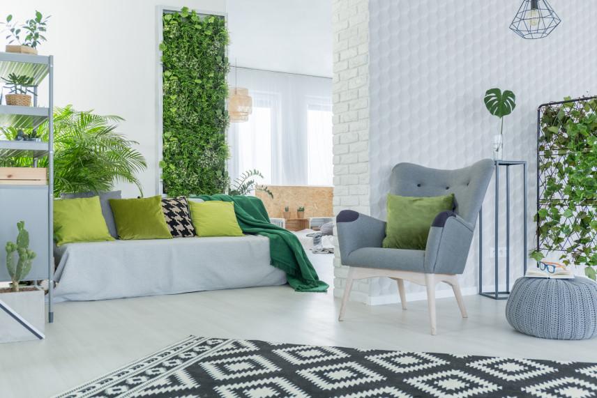 Aranżacja z zielenią w salonie