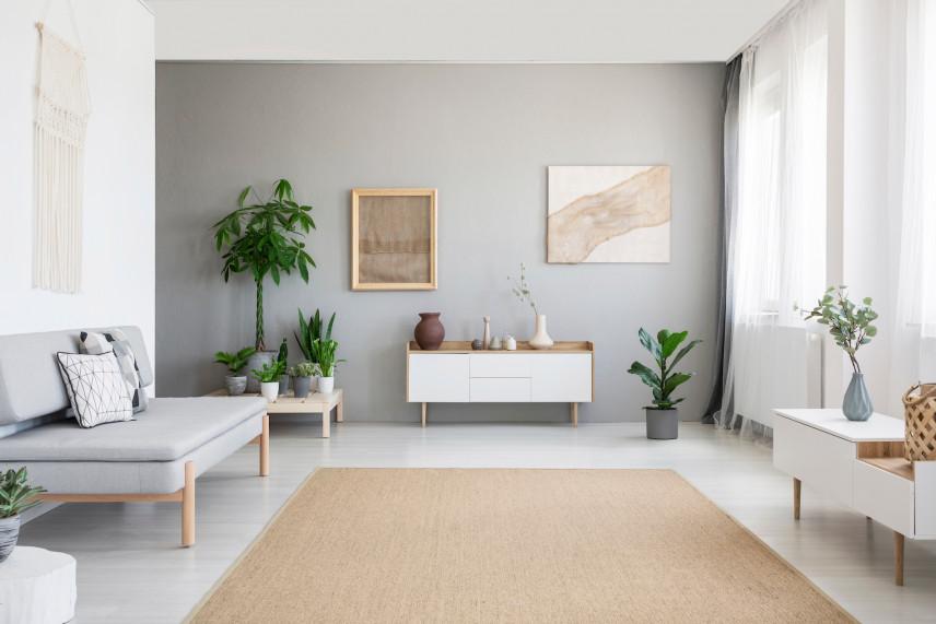 Brązowy dywan w salonie