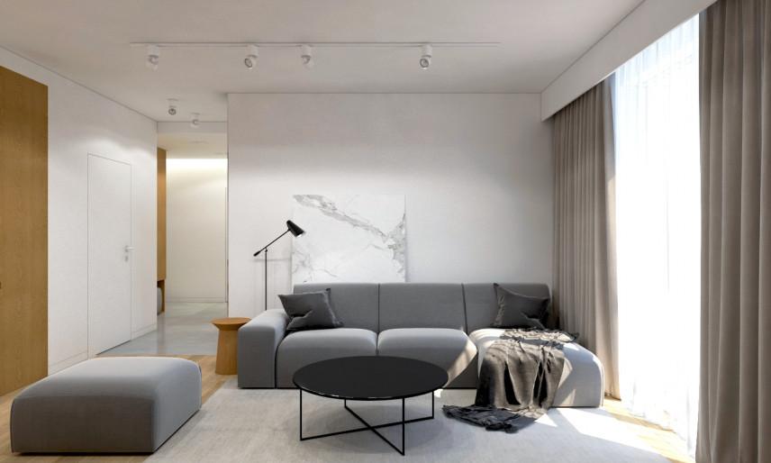 Projekt salonu z szarą sofą