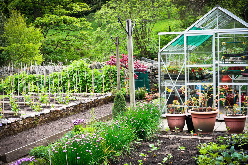 Ogród warzywny ze szklarnią