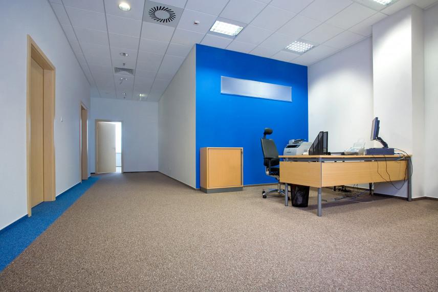 Biuro z niebieską ścianą
