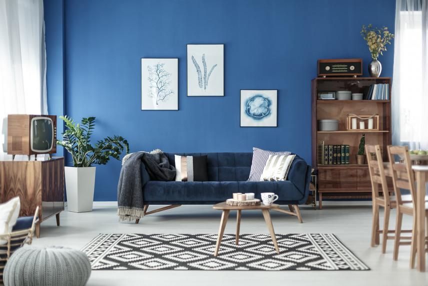 Salon z niebieską ścianą