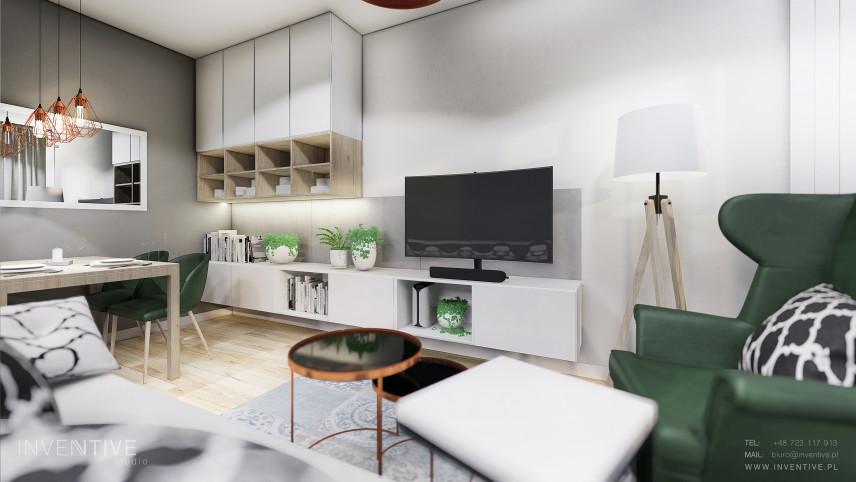 Salon z dużym lustrem prostokątnym na ścianie